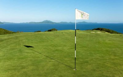 golf-green-with-flag